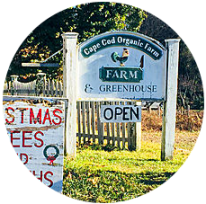 The farm sign reads open