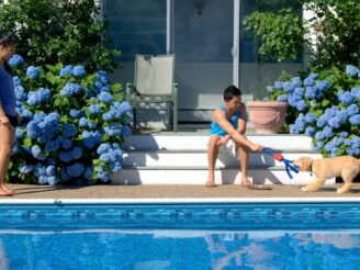 A man plays with his puppy by the pool