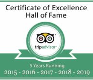 TripAdvisor Hall of Fame logo