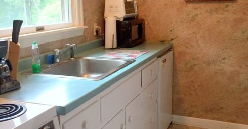 Small suite kitchen with photo of a rose
